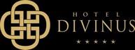 fooldal-referencia-divinus_logo_fekvo_1024px_szeles-2-300x112